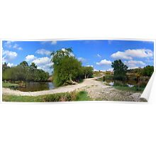 Ashdown Forest  Panorama Poster