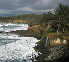 Magnificent Forested Ocean Coves, Oregon by RichInNature