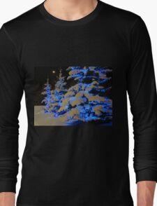 The Beauty Of Winter Long Sleeve T-Shirt