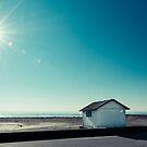 the beach cabin by hannes cmarits