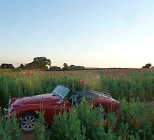 Poppy field, Classic Car by triumphtots