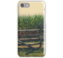 Broken Fence iPhone Case/Skin