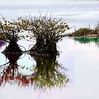 Tranquility  by surrealism2