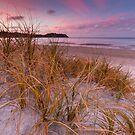 Onetangi Beach - Waiheke Island by Kimball Chen