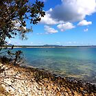 Noosa National Park Australia QLD by Jeannine de Wet