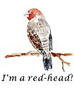 I'm a Red-head! by Maree  Clarkson