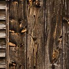 Weathered Wooden Abstracts - 1 by Georgia Mizuleva