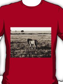 The Proud Lion T-Shirt