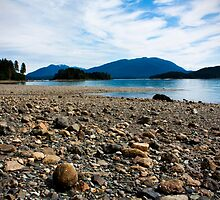 An Alaskan Beachside  by Madeline Snow