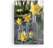 Still Life in the Woods Metal Print