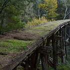 Historic Trestle Bridge In Country Victoria by djzontheball