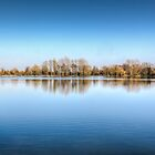 Trees Reflected on the Lake by pixog