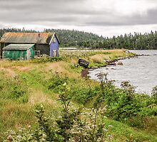 Black Duck Cove by PhotosByHealy