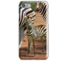 Zebras in the Dust iPhone Case/Skin