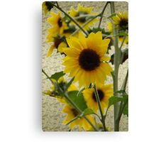 Wildflowers in Style Canvas Print