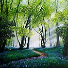 Bluebell Morning by Paula Oakley