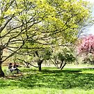 Lunch in the Park in Spring by Susan Savad