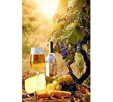 Vineyard Luncheon Photographic Print