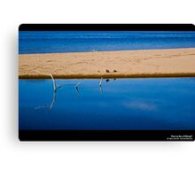 Blue water and land Canvas Print