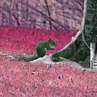 Squirrel  by surrealism2