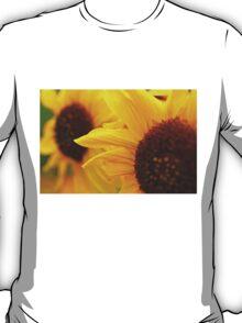 Sunflower Yellow T-Shirt