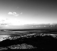View from Scrabo Tower by tsissab86