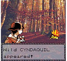 Cyndaquil Encounter Photographic Print