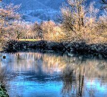 Wilson River  by Thom Zehrfeld