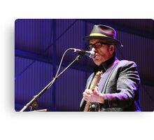Elvis Costello - Deni Blues & Roots 2014 Canvas Print
