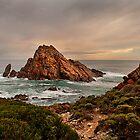 The Rock by John Pitman
