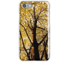 Up the tree iPhone Case/Skin