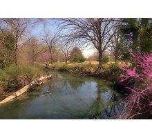 Countryside Creek Photographic Print