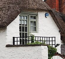 Cosy Cottage  by Alexandra Lavizzari