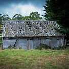 Abandoned Shed by Keith G. Hawley