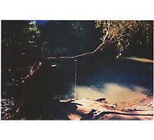 Hidden Paradise - a study - Pt III Photographic Print