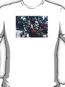 Pomegranate. T-Shirt
