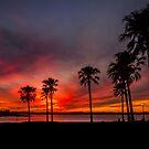 Blazing Sunset - Cleveland Qld Australia by Beth  Wode