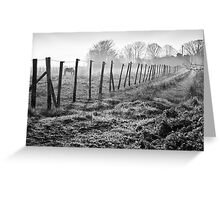 Equine Fence Greeting Card