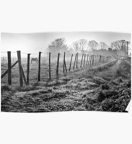 Equine Fence Poster