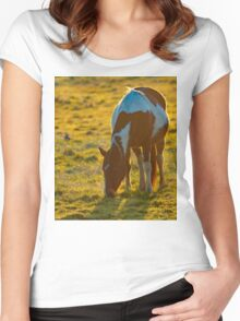 Backlit Horse Women's Fitted Scoop T-Shirt