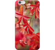 Passion for Colors iPhone Case/Skin