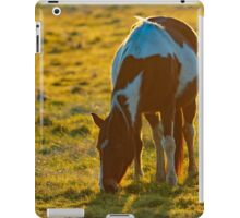 Backlit Horse iPad Case/Skin