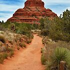 Bell Rock by TeresaB