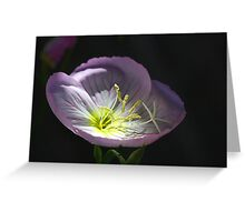 Shine Your Light On Me Greeting Card