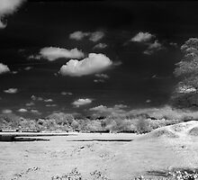 Shackerstone Motte-and-Bailey (Infra Red) by Paul Woloschuk
