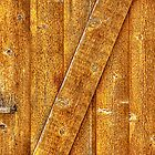 Wood Door with Latch by Roger Passman
