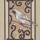 Rainbird II  (Black-faced Cuckooshrike)  by Esther Green