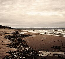Lake Superior Beach in Duluth Minnesota 2 by Emily Rose