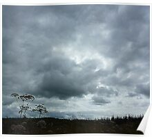 Leaden Skies And Hemlock Poster