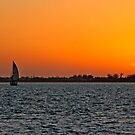 Sunset Sail by phil decocco